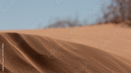 Fotografering The almost abstract shape and texture of windblown sand dunes with out of focus plants on the horizon