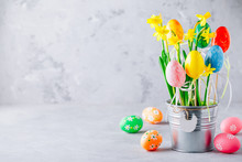 Spring Easter Daffodils Flower...