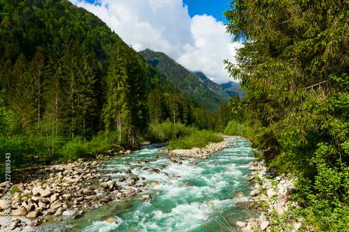Obraz na plátně River flowing in the forest in the Adamello Brenta Natural Park