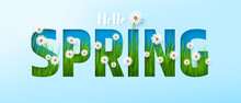 Hello Spring Time Poster Or Banner With Cute White Flowers And Green Grass Inside On Blue Background.Promotion And Shopping Template Or Background For Spring Season Concept.Vector Illustration Eps 10