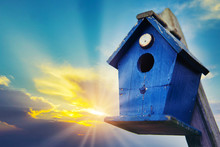 Blue Bird House In Front Of Blue Cloudy Sky