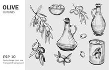 Olives, Olive Branch, Olive Oil. Vector Sketches With Transparent Background