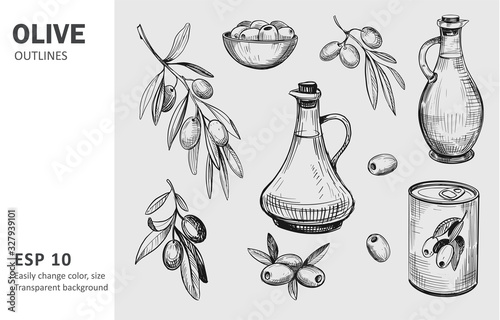 Fototapeta Olives, olive branch, olive oil. Vector sketches with transparent background obraz