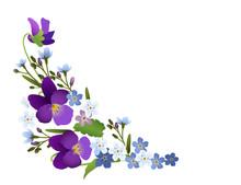 Ornament Von Veilchen Und Vergissmeinnicht Blumen,   Vektor Illustration Isoliert Auf Weißem Hintergrund