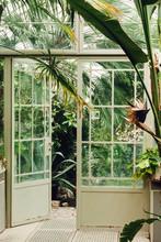 Door In The Greenhouse