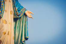 The Blessed Virgin Mary Statue...