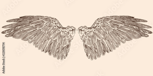 Fényképezés Two spread wings of an angel made of feathers isolated on a beige background