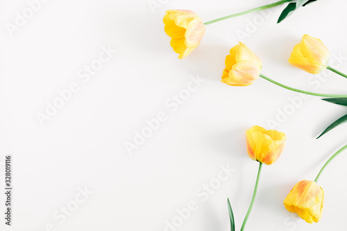 Beautiful composition of tulip, spring flowers Wallpaper Mural
