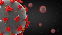 Coronavirus Disease 2019 (COVI...