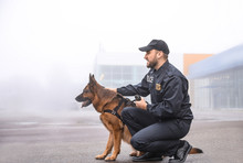 Male Police Officer With Dog P...