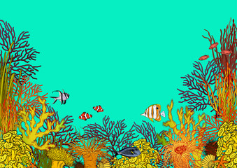 Fototapeta na wymiar Colorful underwater scenery with corals, sea anemones and beautiful tropical fishes.
