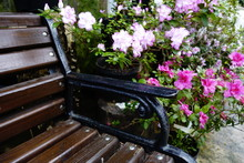 Bench With Flowers At An Indoo...