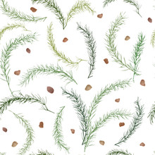 Seamless Pattern With Scattered Green Sprigs Of Asparagus Leaves And Semenamine White Background. Universal Base For Packaging, Flyers And Postcards. Vector