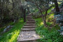 Wooden Stairs At Filopappou Hi...