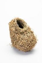 Woven Grass Nest Of Southern M...