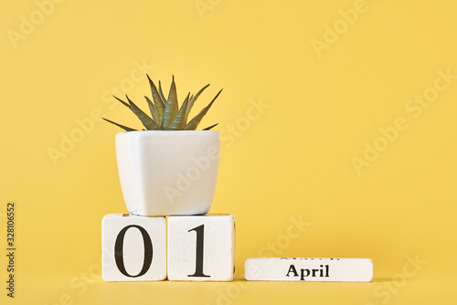 Wooden blocks calendar with date 1st april and plant on the yellow background Canvas Print