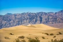 Mesquite Flat Sand Dunes In De...