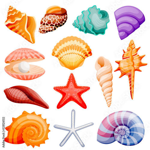 Canvas-taulu Seashells collection