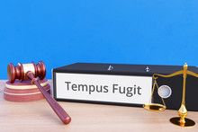 Tempus Fugit – File Folder With Labeling, Gavel And Libra – Law, Judgement, Lawyer