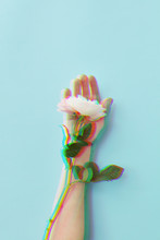 Rose Flower With Glitch Effect...