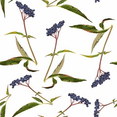 Panel Szklany Owoce Beautiful Autumn seamless pattern with blue berries and leaves. Fall colorful floral background for fashion,fabric and all prints on white background.