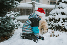 Boy In Santa Hat Playing In The Snow With A Dog In A Yard.