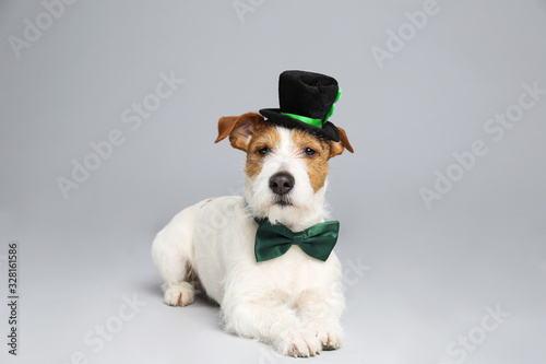 fototapeta na drzwi i meble Jack Russell terrier with leprechaun hat and bow tie on light grey background. St. Patrick's Day