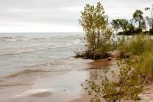Eroding Shoreline Along Lake M...
