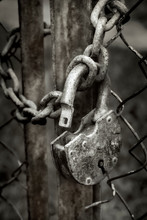 Old Padlock With A Chain On Th...