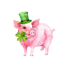 Saint Patrick's Day Card With Pig In Green Hat, 4 Leaves Clover. Watercolor Illustration