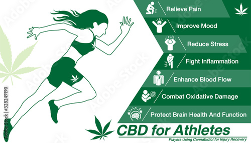 Fototapeta Cannabidiol CBD used for Athletes.Health benefits of Cannabidiol CBD from cannabis, hemp, marijuana, weed effect on body Runner or players. vector infographic on white background. obraz