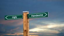Street Sign Handsome Versus Ugly