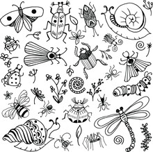 Bugs Doodle Vector Simply Set