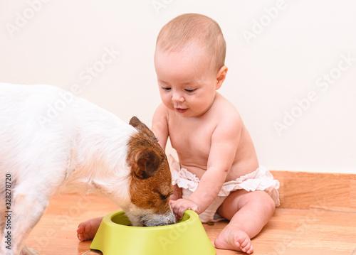 Obraz Baby girl feeding dog from bowl sitting on floor - fototapety do salonu