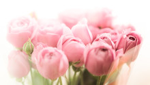 Bouquet Of Pale Peony Roses Fl...