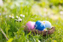 Happy Easter  -  Nest With Easter Eggs In Grass On A Sunny Spring Day - Easter Decoration Background