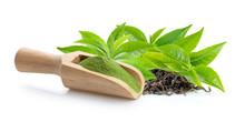 Matcha Green Tea Powder In Wood Scoop Green Tea Leaf And Dry  On White Background