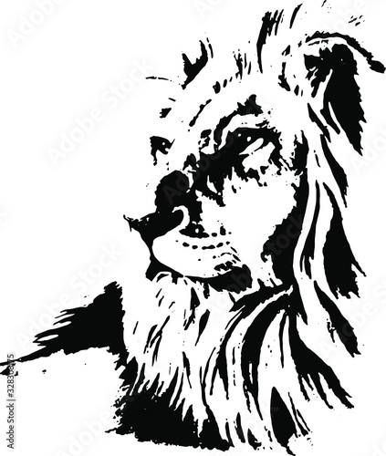 Hand drawn lion. Vector isolated on a transparent background Canvas Print