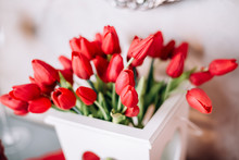 Red Tulips In A Gift Box