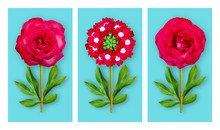 Three Offbeat Flowers On A Blu...