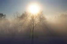 気嵐と太陽