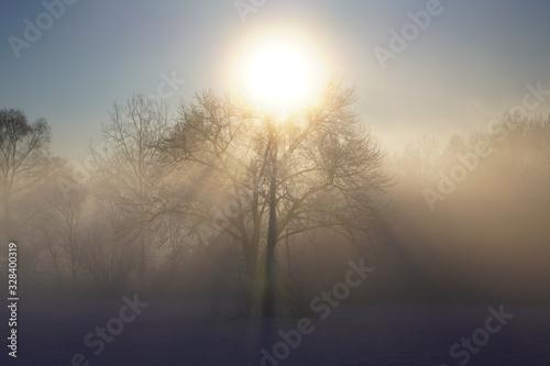 Photo 気嵐と太陽