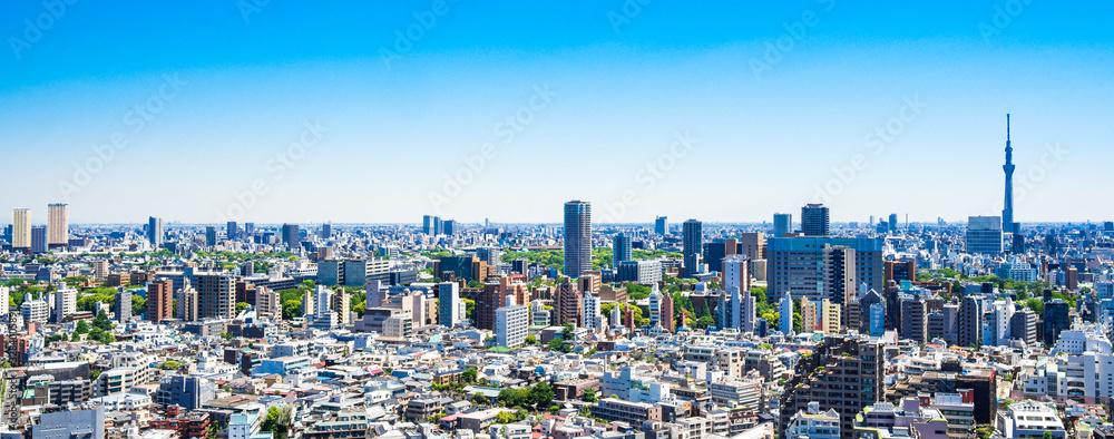 Fototapeta 東京 青空と都市風景 ワイド
