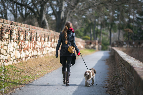 Fototapeta woman taking her dog for a walk obraz