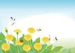タンポポと春の昆虫