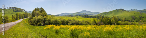 Panoramic view of a meadow blooming with yellow flowers. Country road. Green hills and blue sky, daylight. Spring background. - 328419960