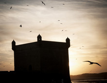 Medina And Coastline Of Essaou...