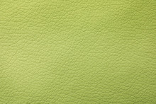 Texture Of Light Green Leather...