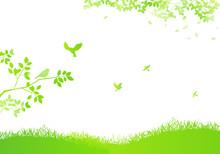 野原と飛ぶ鳥と木漏れ日