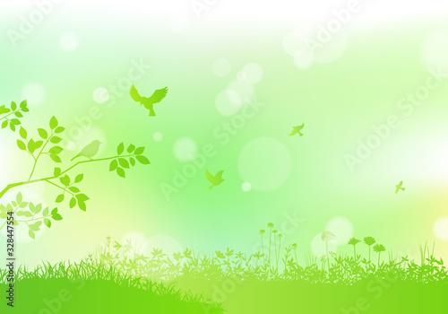 Fotografiet 野原と飛ぶ鳥 背景ボケ